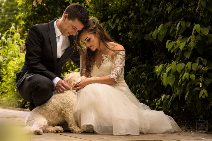 Guest Post: Tips for Dog Friendly Weddings
